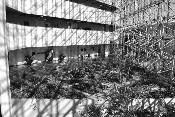 Jardim interno do Anexo da Assembleia Legislativa do Paraná, em Curitiba - 2009.