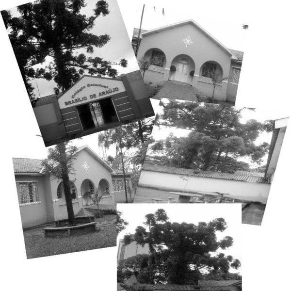 Colégio Estadual Brasílio de Araújo - sem data.